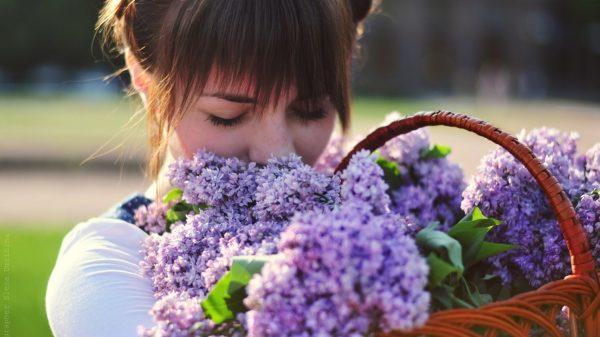 Сирень – это нежность, трепетность, можно сказать, первая любовь. Королева цветов роза – красота, искренность и признание.