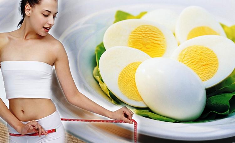 Яйцо Польза Похудение.