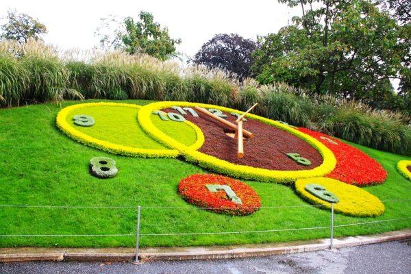 Для того, чтобы вырастить цветочные часы используется шесть с половиной тысяч цветов