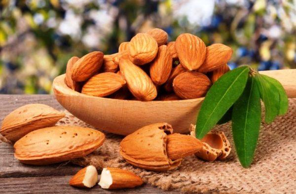 Какие бывают орехи 3