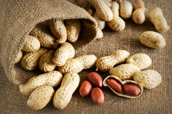 Какие бывают орехи 4