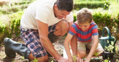 Как воспитать в ребенке любовь к труду