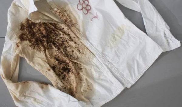 Как вывести плесень с ткани