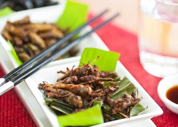 еде из насекомых