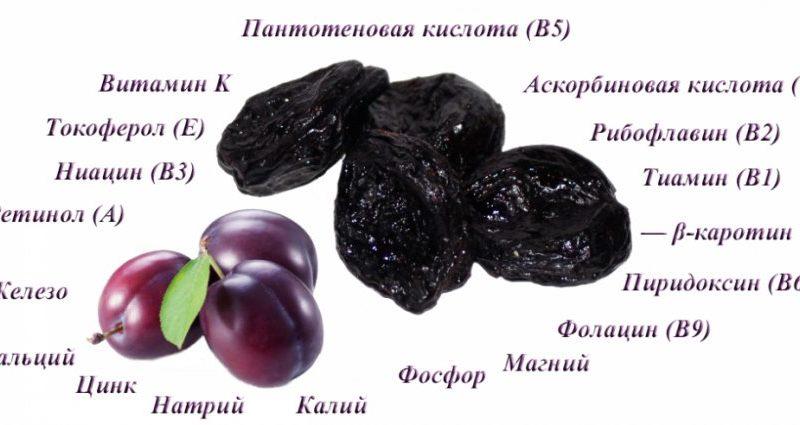 chernosliv-polza-i-vred-suhofrukta-dlja-organizma-cheloveka-2