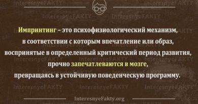 imprinting-chto-jeto-v-psihologii-vidy-primery-2