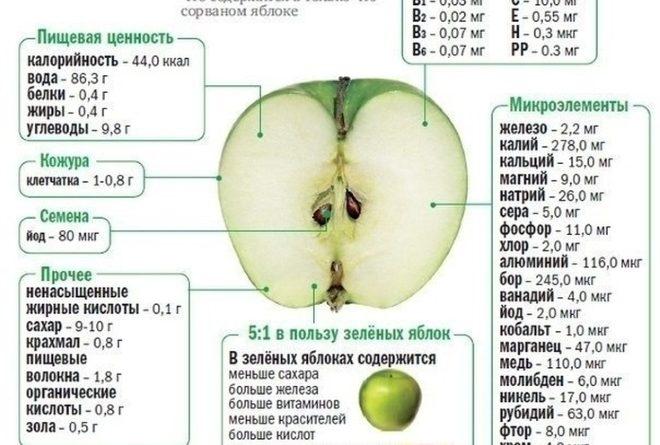 kakie-vitaminy-v-jablokah-skolko-mikrojelementy-mineraly-gde-bolshe-pitatelnye-veshhestva-2