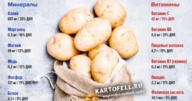 kartofel-poleznye-svojstva-i-vred-lechenie-kartofelem-2