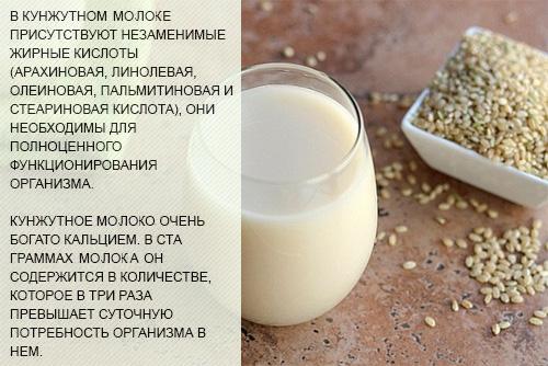 kunzhutnoe-moloko-poleznye-svojstva-i-sposoby-prigotovlenija-v-domashnih-uslovijah-2