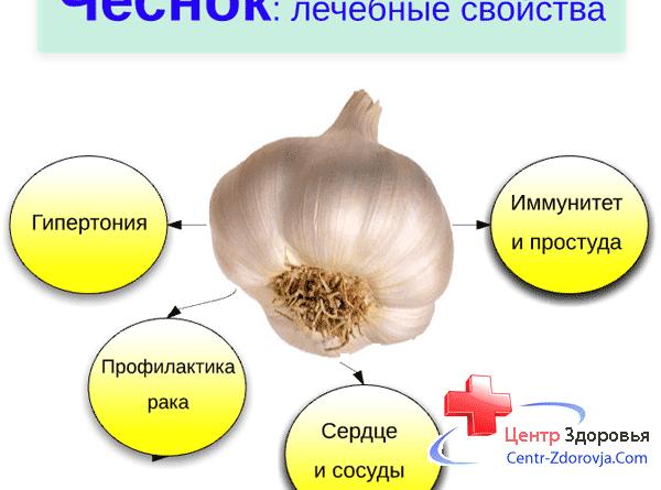 polza-chesnoka-dlja-organizma-zhenshhiny-chem-horosh-i-kakoj-mozhet-prichinit-vred-zdorovju-i-krasote-pri-ne-pravilnom-primenenii-a-takzhe-kakovy-ego-osobennye-svojstva-2