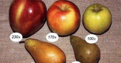 skolko-kalorij-v-jabloke-zelenom-krasnom-i-golden-v-100-grammah-2