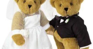 v-ukraine-novaja-moda-svadby-za-schet-sponsorov-4