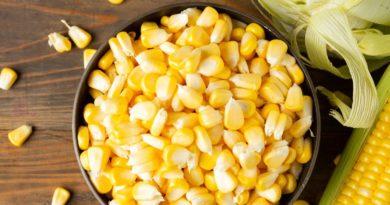 varenaja-kukuruza-v-pochatkah-polza-i-vred-dlja-zdorovja-cheloveka-2
