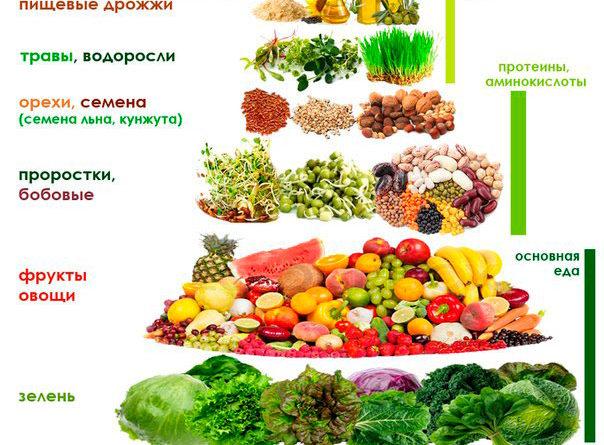vegany-kto-jeto-takie-i-chto-oni-edjat-veganstvo-prostymi-slovami-2